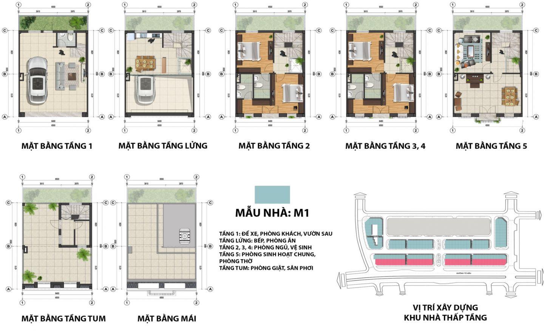 thiết kế shophouse the terra an hưng mẫu m1